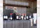 Ruta del Vino Valle del Maule celebró el Día del Vino Chileno